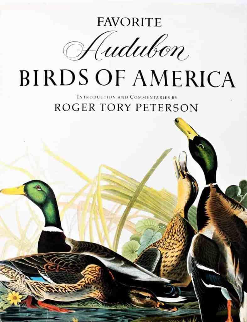 Favorite Audobon Birds of America