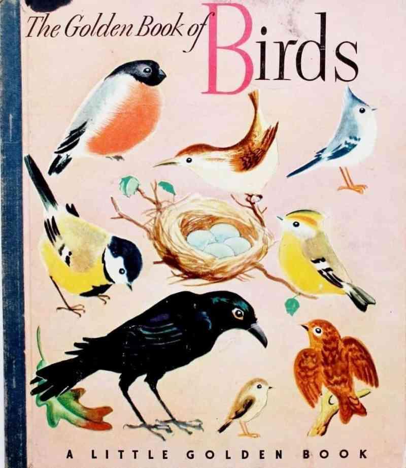Birds vintage Little Golden Book