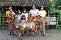 Sri kambing - Aditya Wardhana (7)