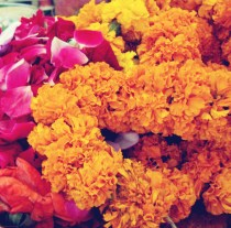 roses and marigold garlands