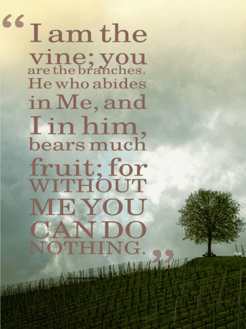 Have you ever wondered why God gives tasks to His children? He doesn't need our help. Here's a look into the business of helping God, from a mother's heart. (John 15:5) https://adivineencounter.com/help-me-help-you