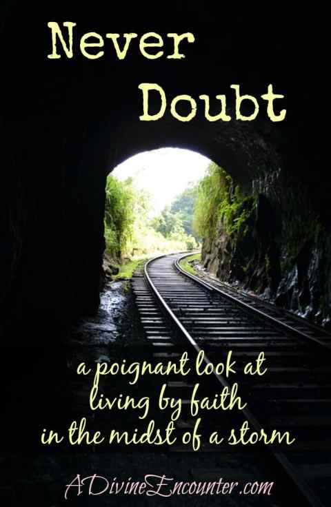 Never Doubt…