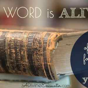 The Word is Alive: The Power of the Bible for Real Life