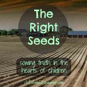 The Right Seeds