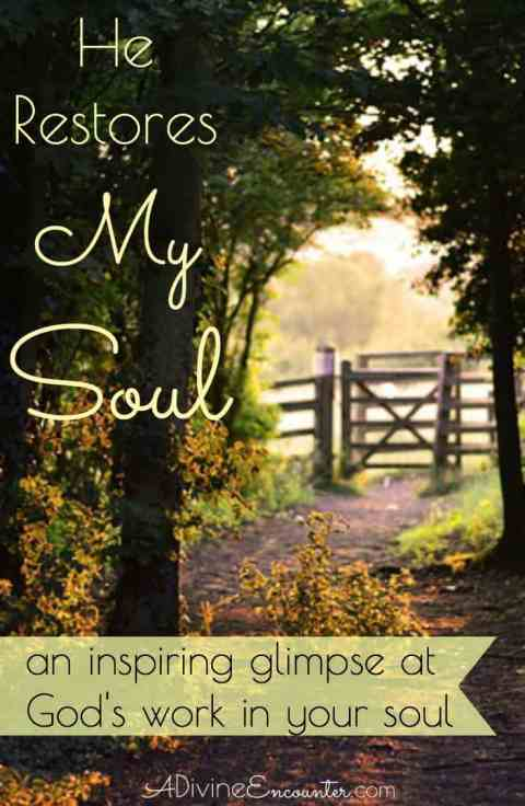 "A heart-stirring look at the hardships of life, and a reflection on what the psalmist means when he says of God, ""He restores my soul."" (Psalm 23:3)"