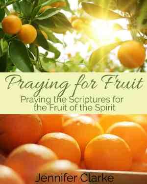 Praying for Fruit cover