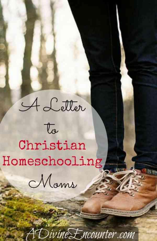 Letter to Christian Homeschooling Moms