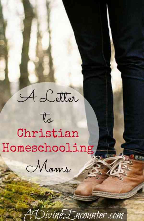 Letter to Christian Homeschooling Moms