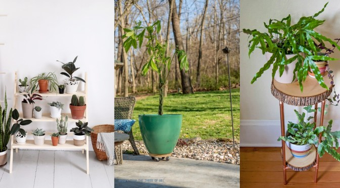 15 DIY Wood Plant Stand To Make Your Space Beautiful