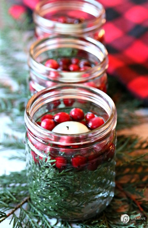 Cranberry Cedar Christmas Luminaries