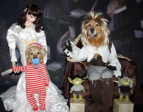 Labyrinth Halloween Costume For Dogs