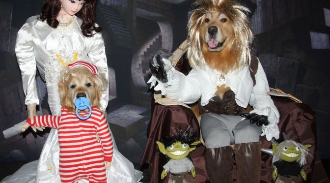 Labyrinth Halloween Costume For Dogs Tutorial