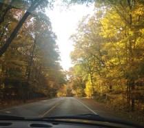 Road trip 3 (c)Gracie K. Harold 2014