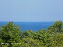 McGulpin View3