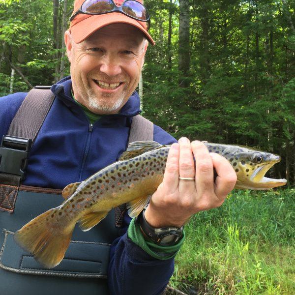 brown_trout_adirondacks