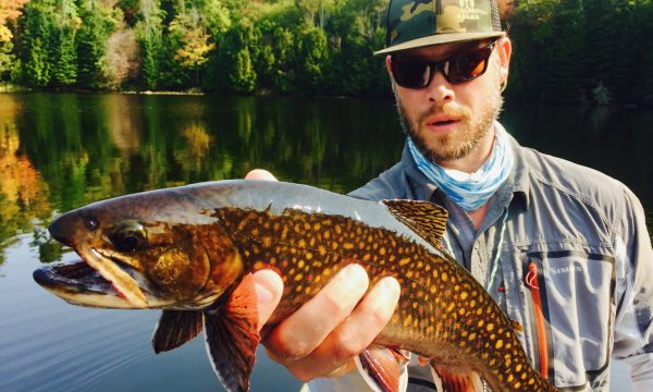 brook_trout_adirondacks