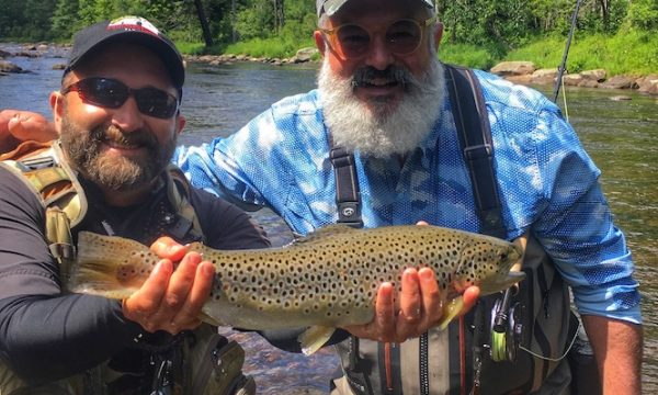 brown_trout_adirondacks