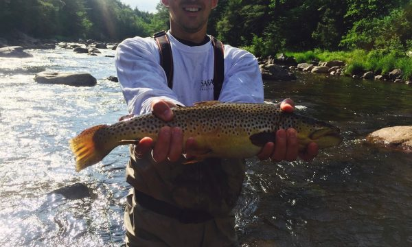 Trout-Brown-Fly-Fishing-Adirondack-New-York-NY-6