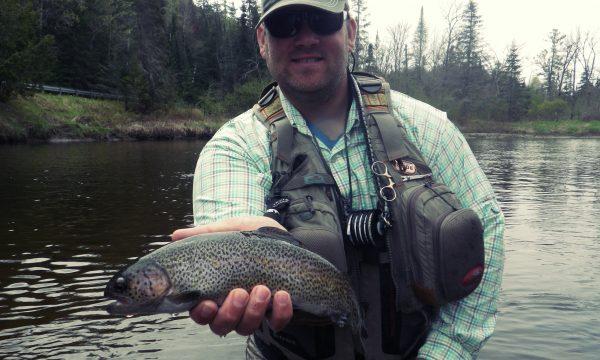rainbow_trout_ausable