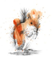 Squirrel Ink with Splatter