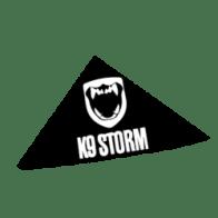 k9-storm-logo