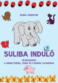 Köny Guru Kiadó: Suliba induló. Tájékozódás a mennyiségek, terek és formák világában.