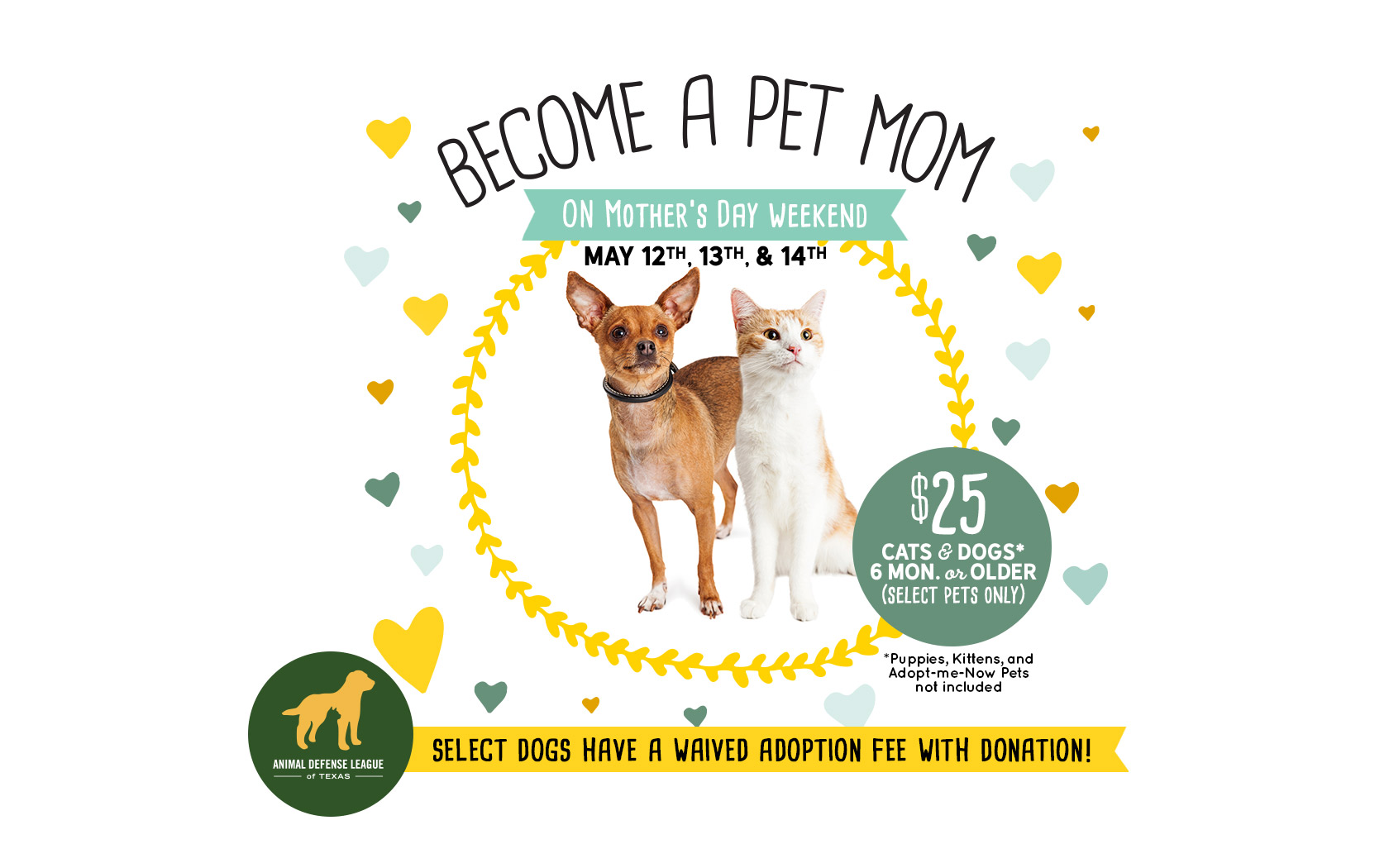 Become A Pet Mom Mother S Day Adoption Special Animal