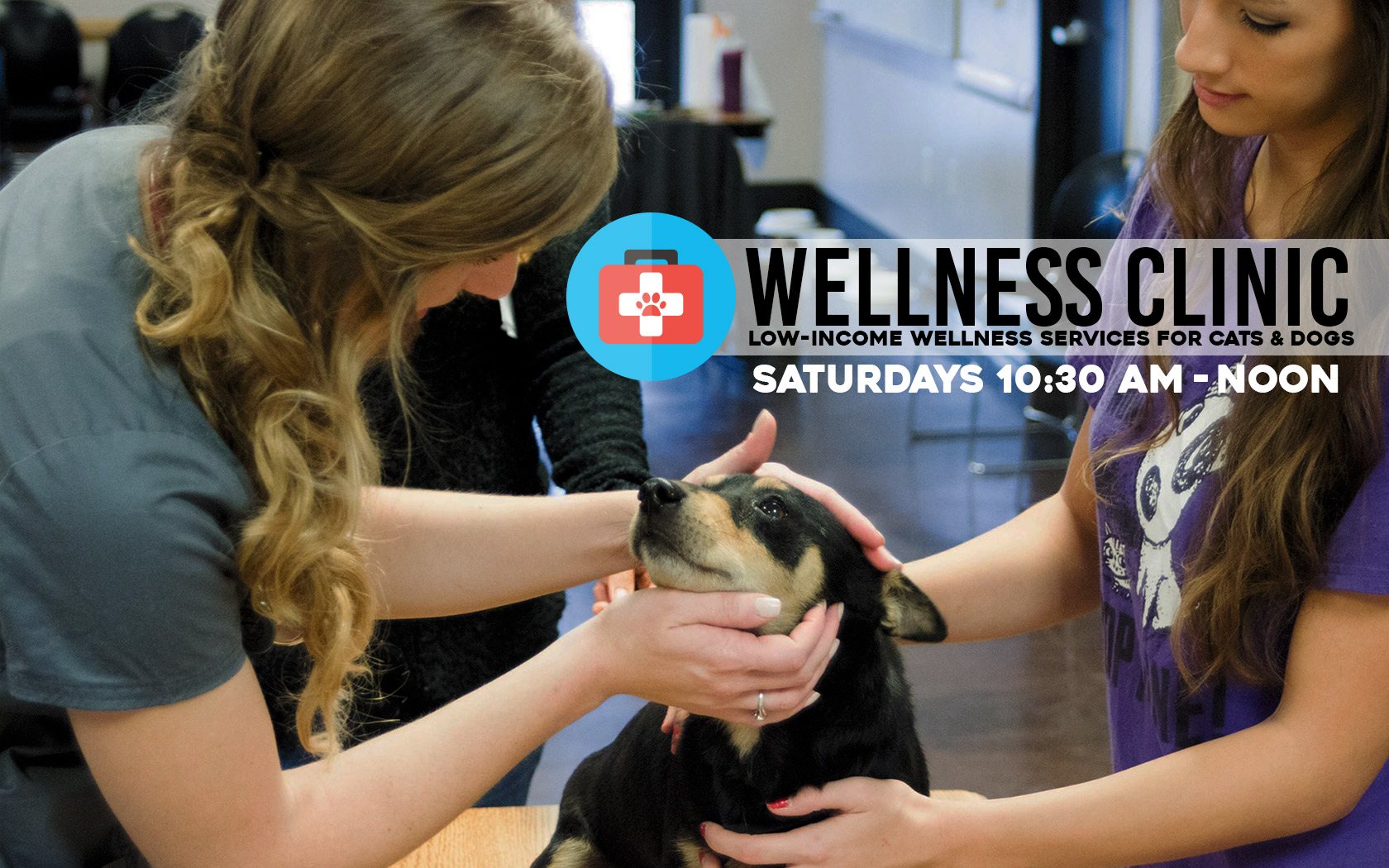 Low-income pet wellness clinic services | low-cost vaccinations