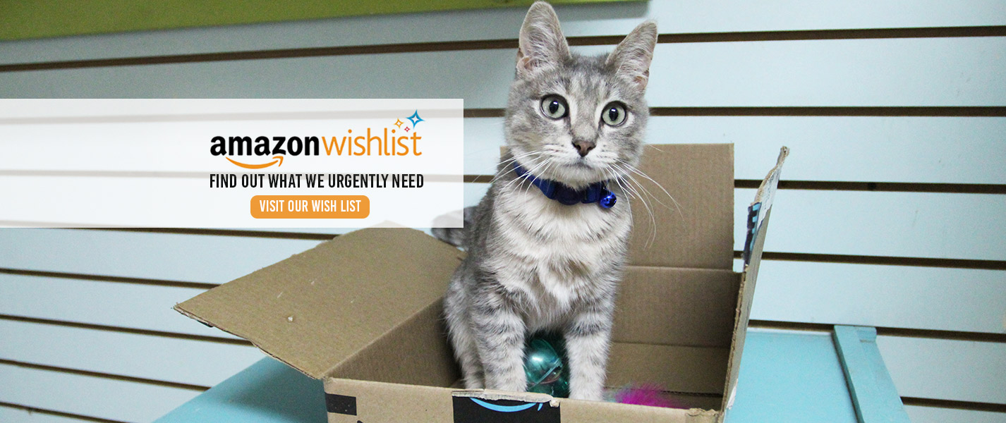 Animal Defense League Amazon Wish List