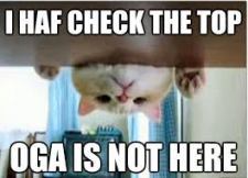 oga cat