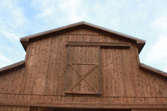 All Wood Interior Doors