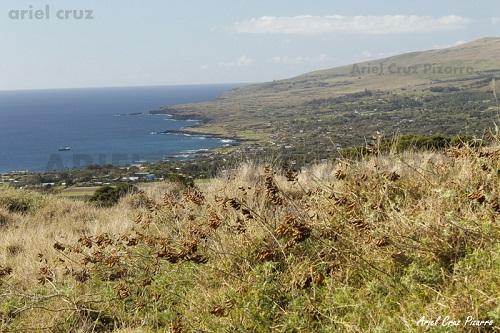Sendero Te Ara o Te Ao: Volcán Rano Kau y Orongo