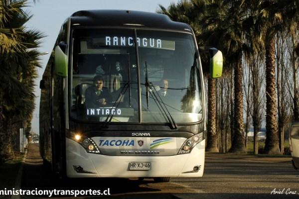 Entrevista a Tripulación Buses Tacoha (160 La Vanidosa)