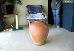 Fat Cat in pot. The escape sequence