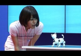 Robot pet dog controlled via smartphone