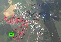 88 women in formation skydiving