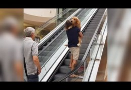 Carrying Dog Up Escalator