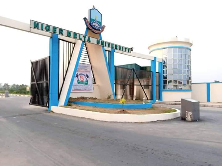 Jambites: 5 Important Reasons Why You Must Choose Niger Delta University