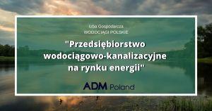 Przedsiębiorstwo wodociągowo-kanalizacyjne na rynku energii – Konferencja online