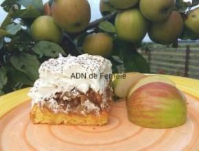 prăjitură cu măr şi frişcă