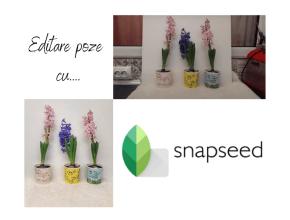 Cum editez pozele cu Snapseed
