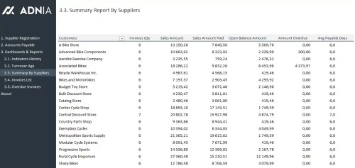 Account Payable Management Template - Report By Suppliers