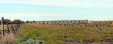 puente-molina