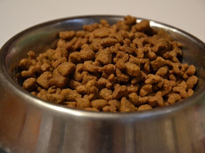 Detectan sustancia para eutanasia en comida para perros
