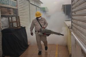 ACCIONES DE FUMIGACIONES (ARCHIVO) (2)