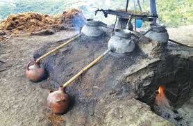destilar mezcal