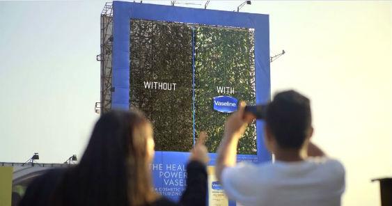 vaseline_live_billboard_563.jpg