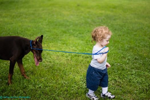 Mason Laica Puppy