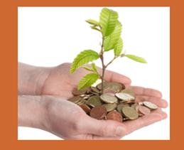 Planta de monedas