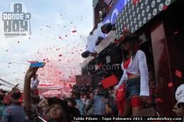 Toldo Pilsen 2015 - Tope Palmares